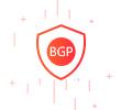 BGP高防王者